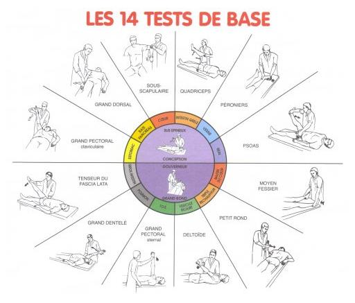 les_14_tests_de_base