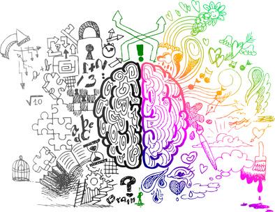 cerveau droit gauche kinesiologie formation aubagne Kinésiologie Sud-Est