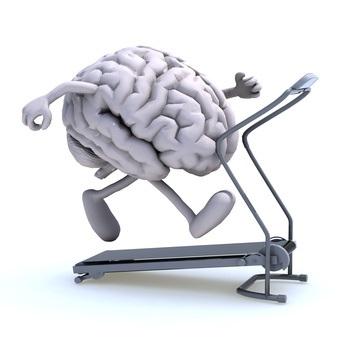 cerveau sport formation 3 en 1 kinesiologie sud est aubagne marseille