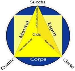 Three In One Concept (TIOC)